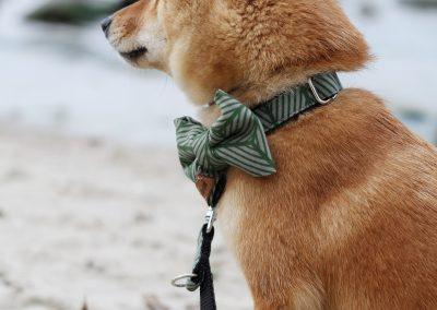 Hundeklunker_3
